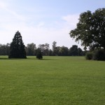 Whiteknights playing fields